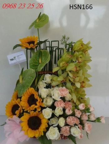 hoa hsn166