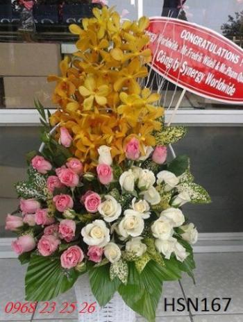 hoa hsn167