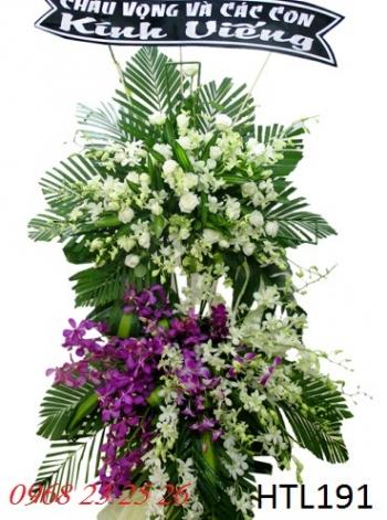 hoa htl191