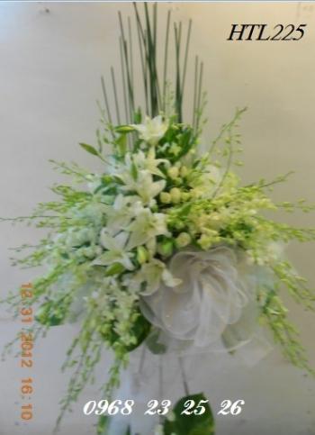 hoa htl225